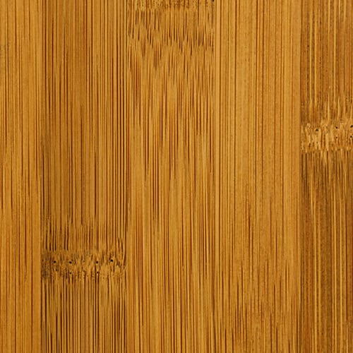 Teragren Studio Wide Plank Bamboo Flooring   Flat Grain Caramelized