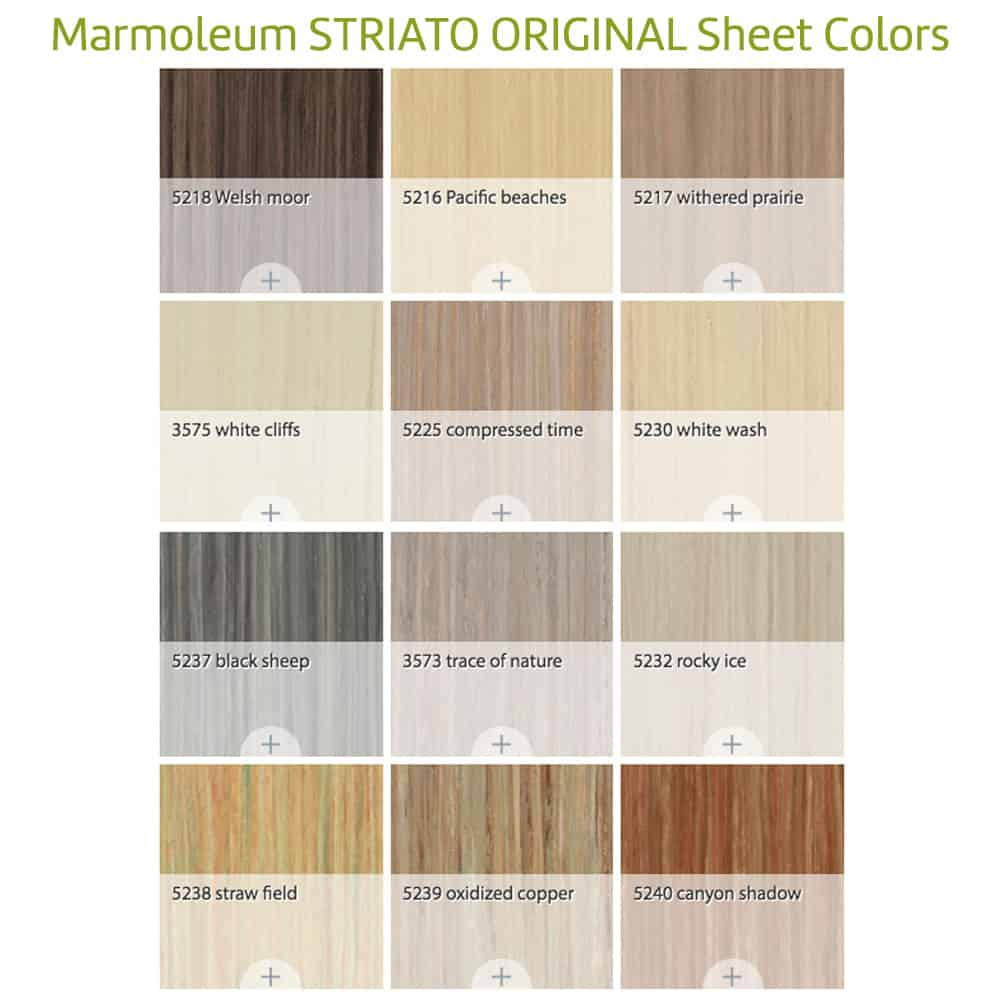 normal marmoleum floor linoleum pet shelter forums africandesert flooring roll startup for forbo topics non profit sheeting frescoseries