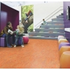 Marmoleum Vivace Sheet Flooring - at Greenhome Solutions