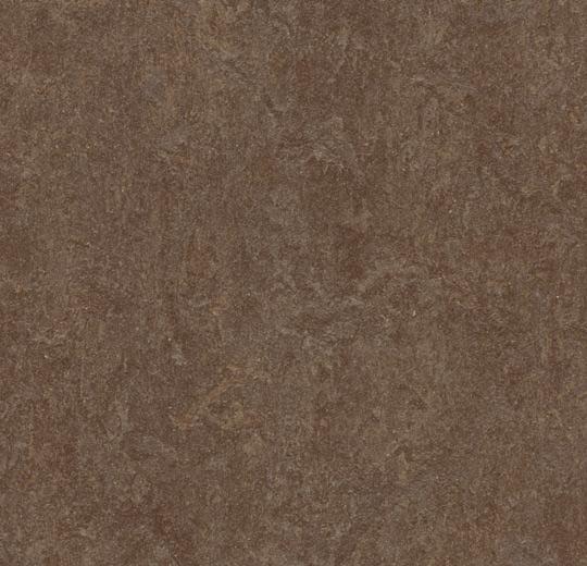 Forbo Marmoleum Click Cinch Loc Floating Floor Square
