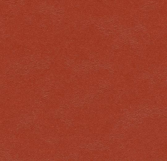 Marmoleum Walton Cirrus Sheet Glue Down Flooring