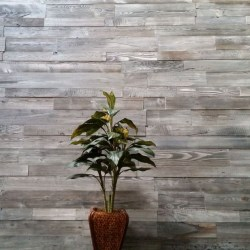 Sustainable Lumber Co. Wood Wall Panels  |  Stonewash Gray