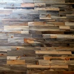 Sustainable Lumber Co. Wood Wall Panels | Beetle Kill Pine