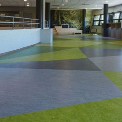 Marmoleum Composition Sheet (MCS)  - Glue Down Flooring