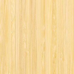 Teragren Signature Naturals Bamboo Flooring | Vertical Grain Natural