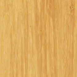 Teragren Synergy ONE Strand Bamboo Flooring | Wheat